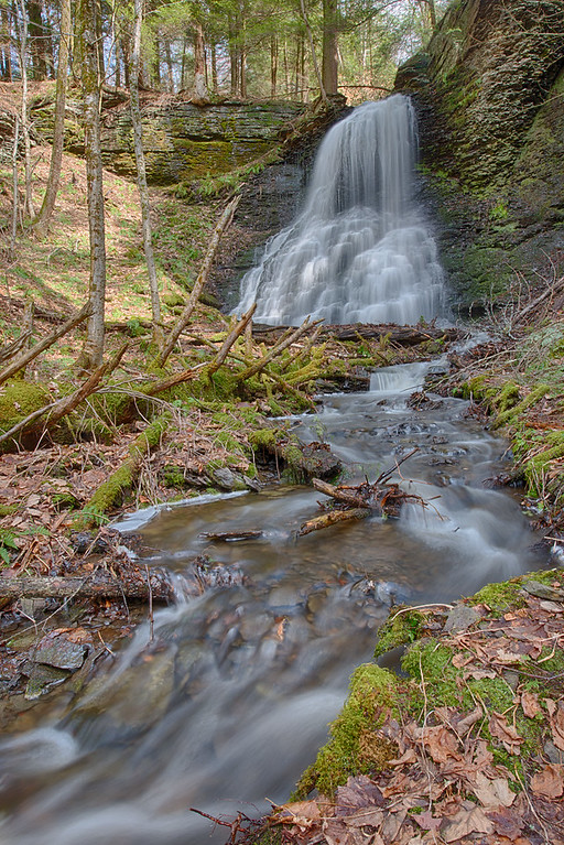 April 21 - Falls along outlet to Lost Pond