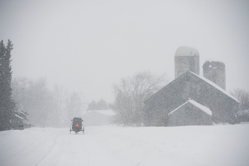 February 6 - Amish Buggy in Winter