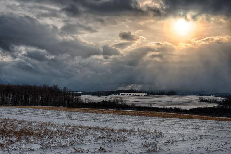 January 6 - The uplands south of Utica, NY