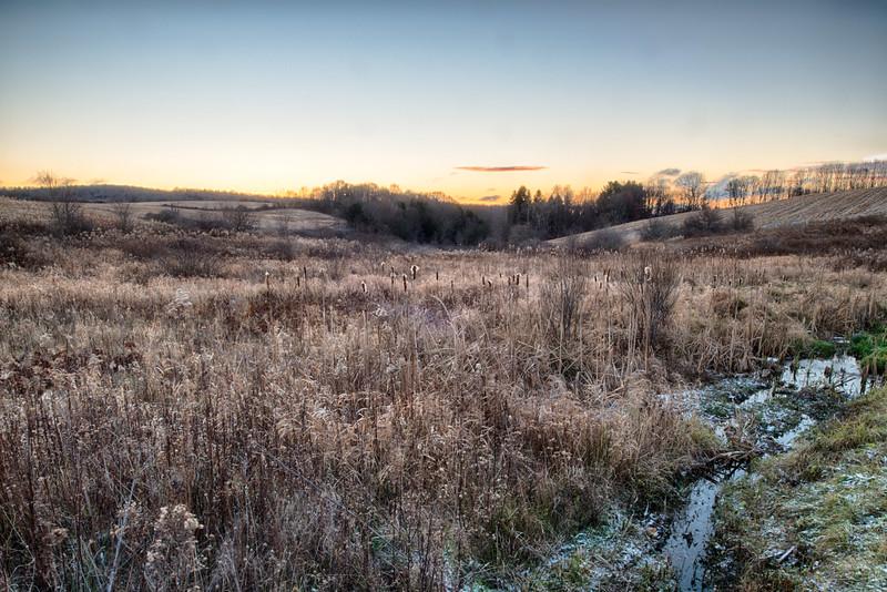 November 23 - Frosty Morning