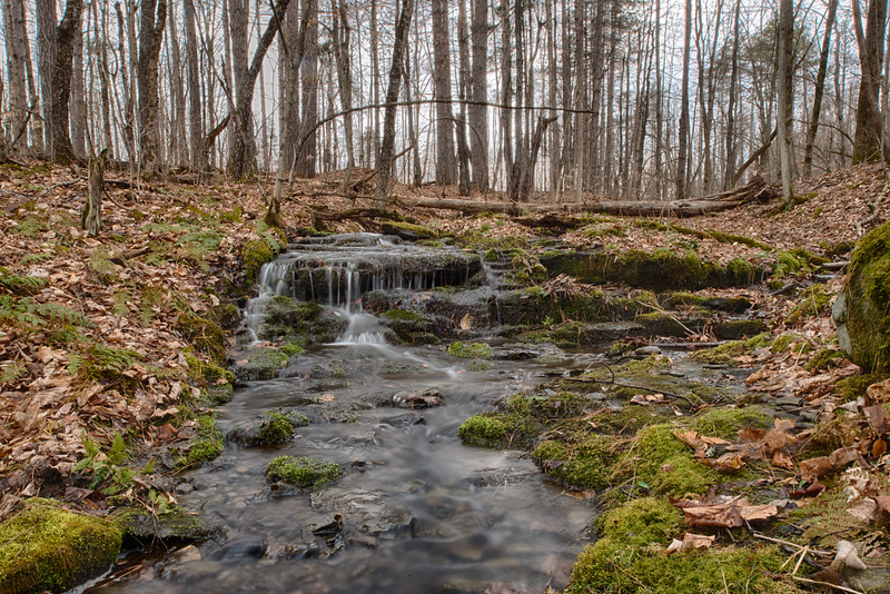 April 1 - Small brook in the Brookfield Horse Trail System